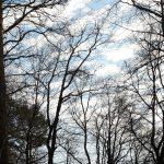 2019.12.31 MS01 150x150 - Impressionen aus Ernsthofen