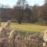 2019.12.31 MS05 150x150 - Impressionen aus Ernsthofen