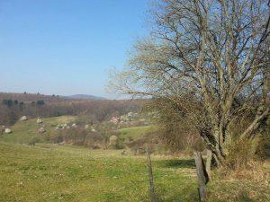 EH Fotos 2016.06 02 300x225 - Der Ort Ernsthofen