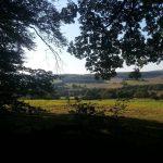 EH Fotos 2016.09 05 150x150 - Der Ort Ernsthofen