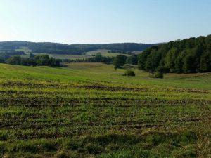 EH Fotos 2016.09 08 300x225 - Der Ort Ernsthofen