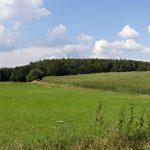 20180716 171333 150x150 - Der Ort Ernsthofen