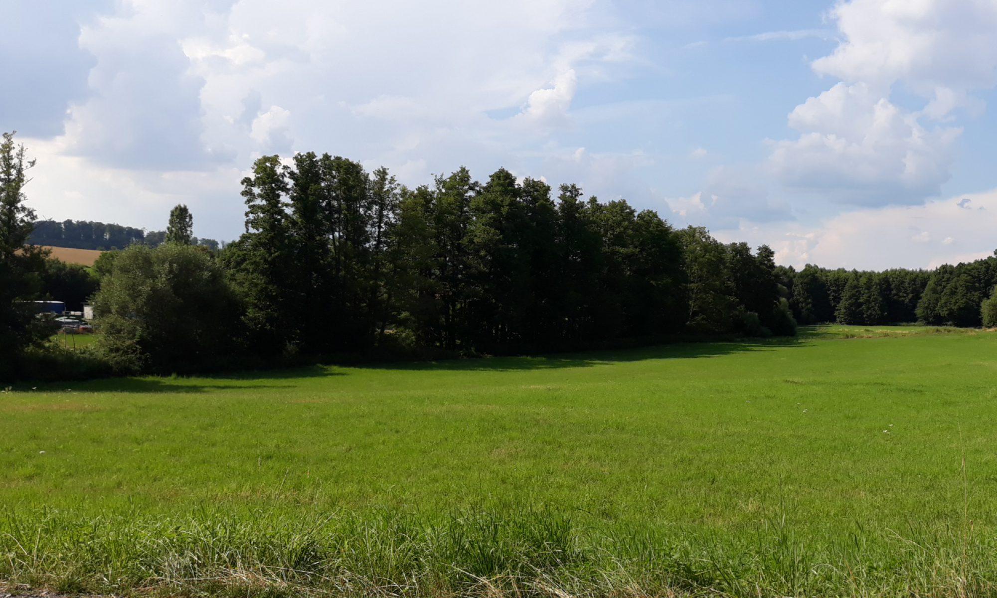 Ernsthofen