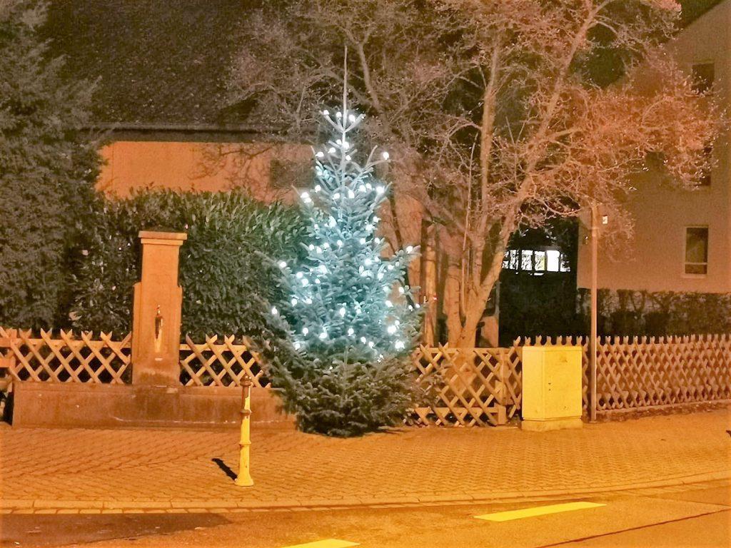 Weihnachtsbaum 2019 01 1024x768 - Weihnachten 2019