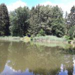 2020.07 Linda 12 150x150 - Impressionen aus Ernsthofen