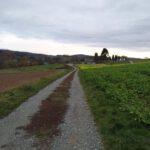 20201122 155635 150x150 - Impressionen aus Ernsthofen